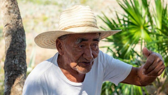 Maya alter Mann Sisalplantage Hazienda