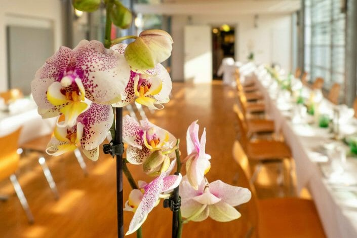Hochzeit Botanischer Garten Linz Tischdekoration